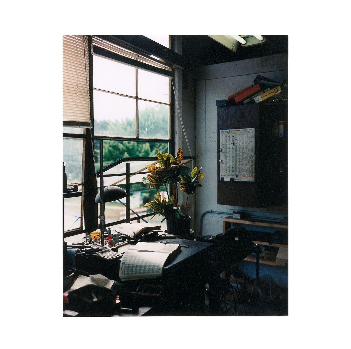 """Plant"" | Village Portrait | Pentwater, Michigan, USA | 1996"
